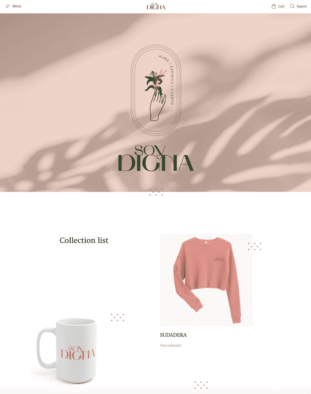reach shopify theme boutiques