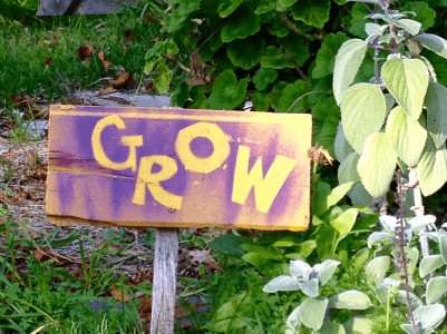 "A photograph of purple sign that says ""grow"" in yellow letters. The sign is in the middle of a garden full of green plants."