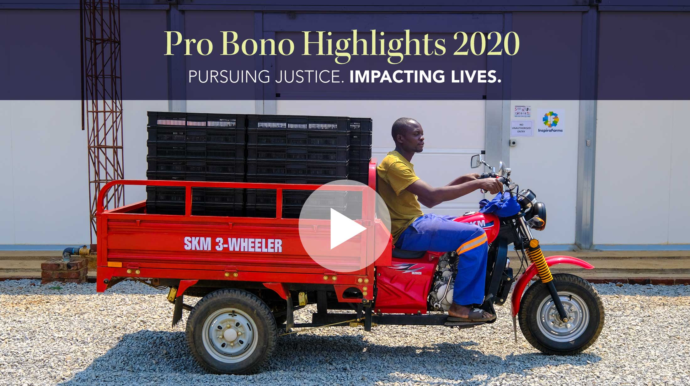 Use this to click play to watch the Pro Bono 2020 Highlights video.