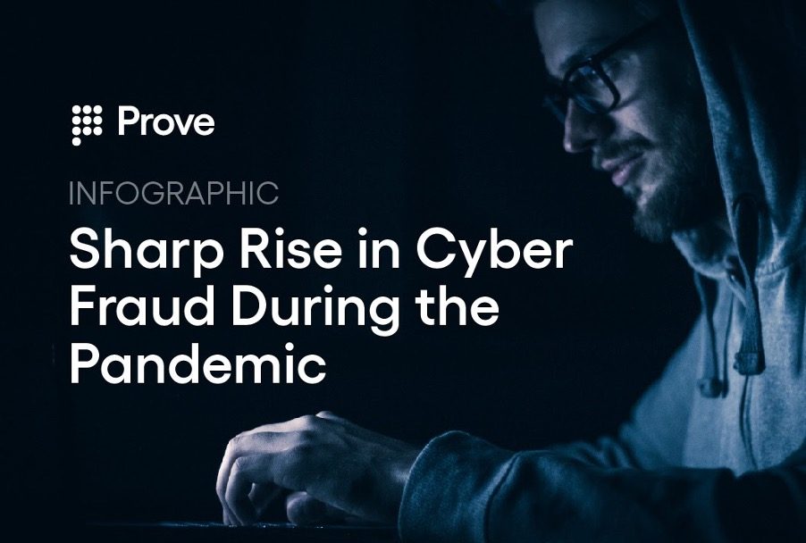 Infographic: Sharp Rise in Cyber Fraud During the Pandemic