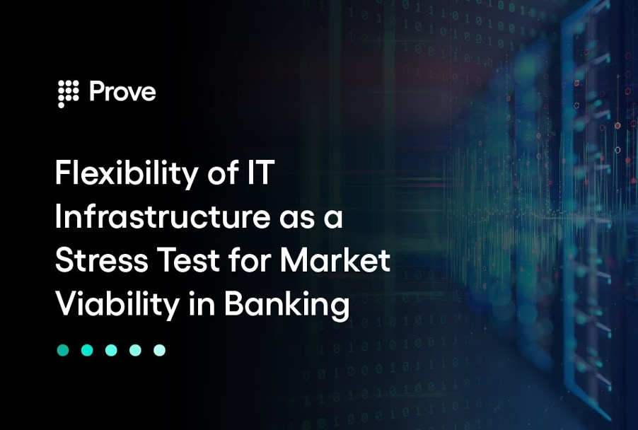 Flexibility of IT Infrastructure as a Stress Test for Market Viability in Banking