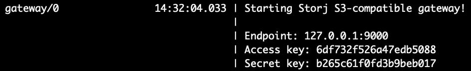 Starting Storj S3-compatible gateway