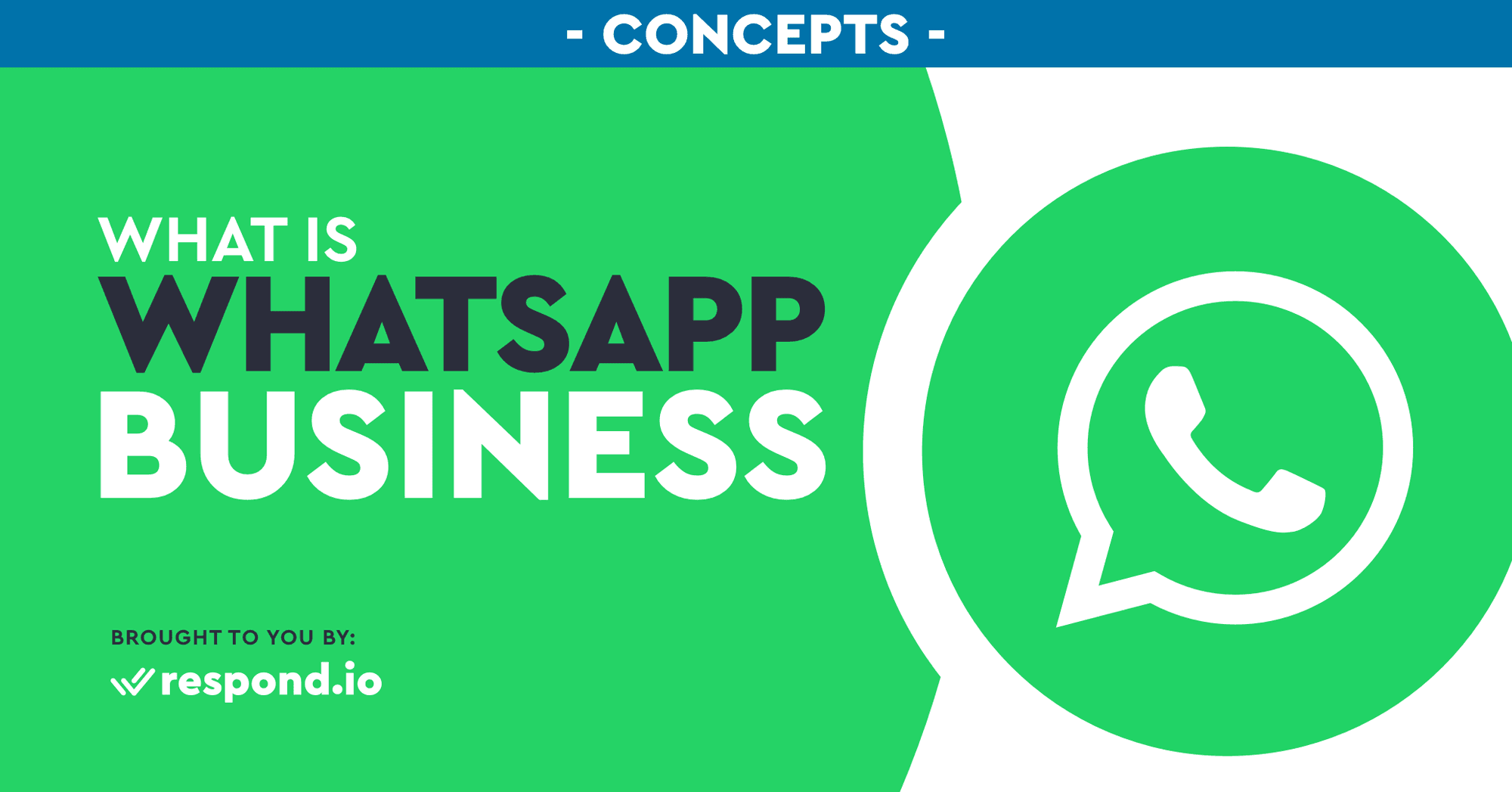 WhatsApp Business: Accounts & Features Overview (March 2021)
