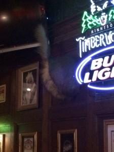 Bull light Inn
