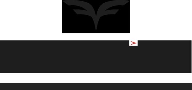 FutureFlight