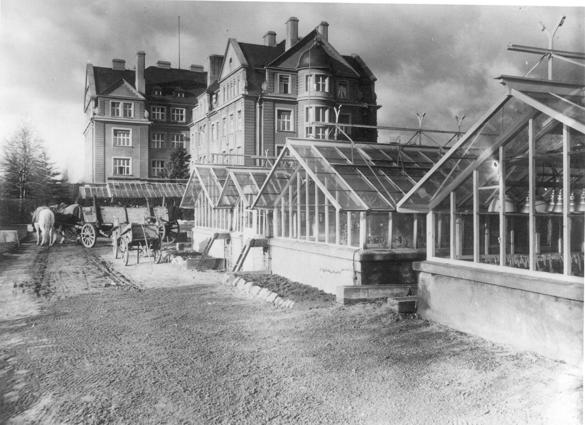 Fotografie vom Kaiser-Wilhelm-Institut für Biologie mit Gewächshäusern, 1930er-Jahre.