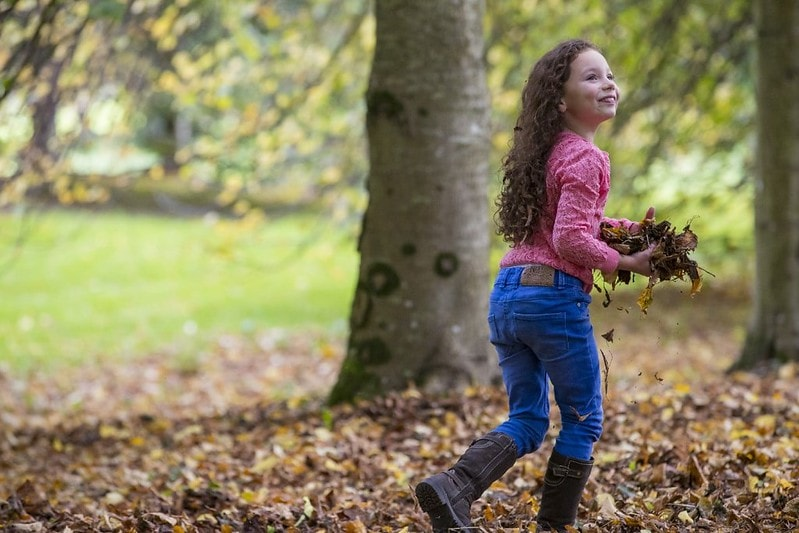 A young girl playing with leaves in the parkland of Hanbury Hall.