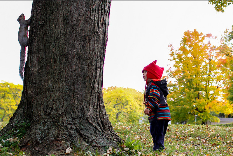 Toddler looking at tree and squirrel.