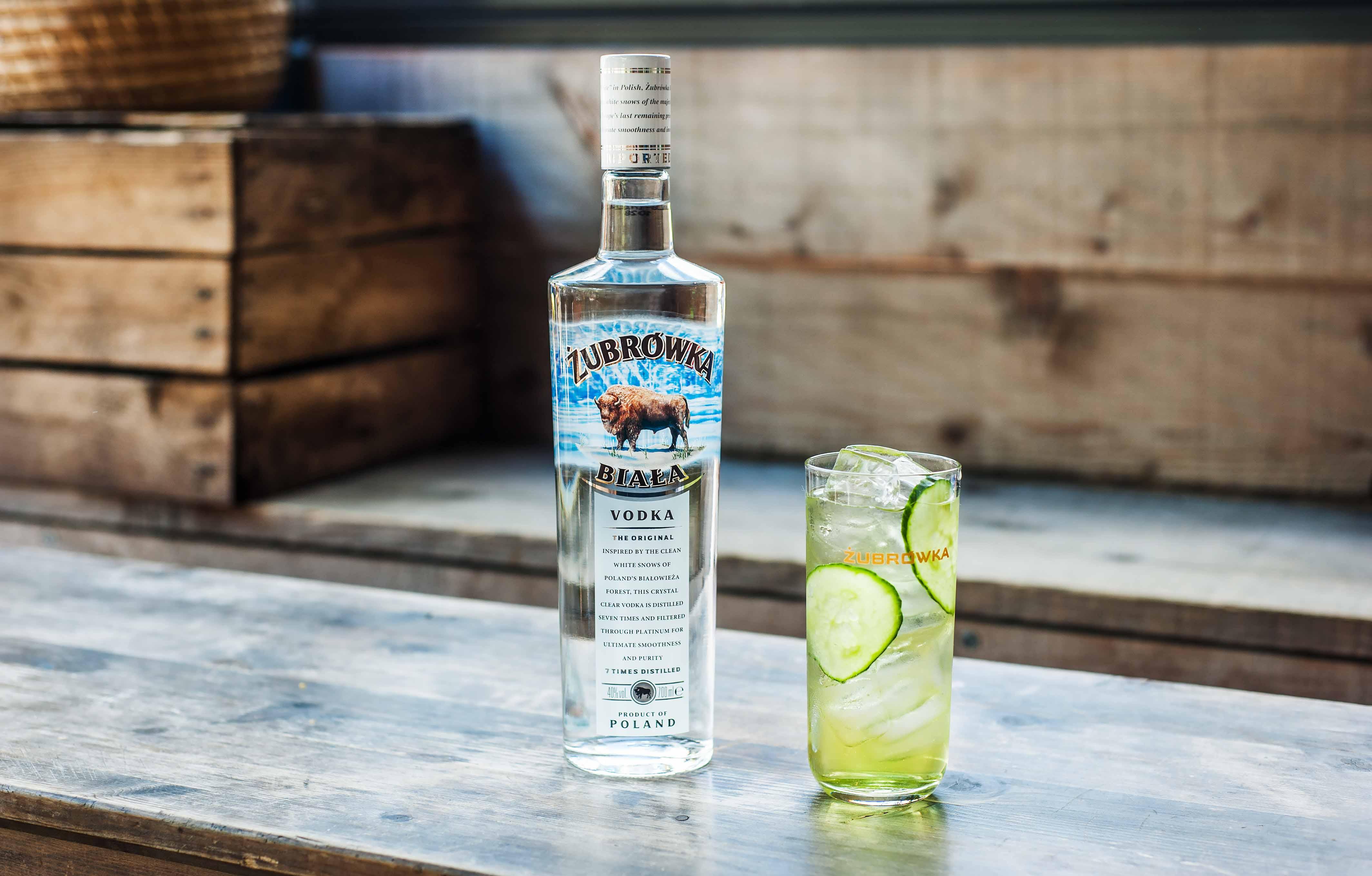Le Top 10 des meilleurs cocktails à base de vodka