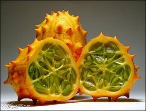 droles de fruits3