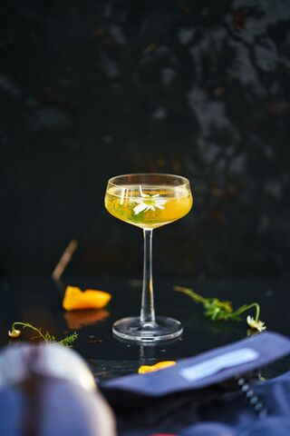 Martini Orange & Camomille
