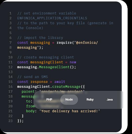 Code window showing the Enfonica Developer SDK