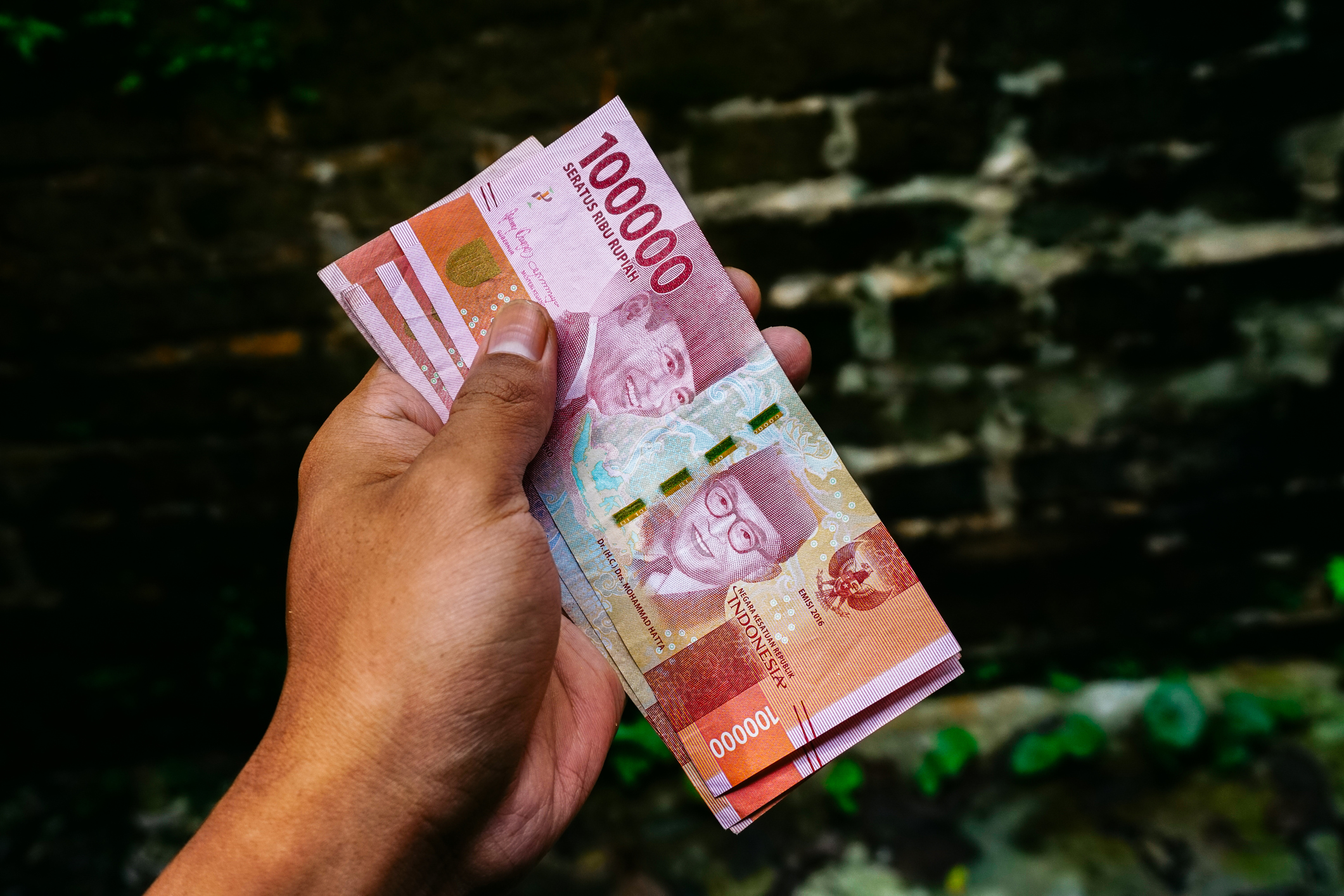 The rise of halal finance in Indonesia
