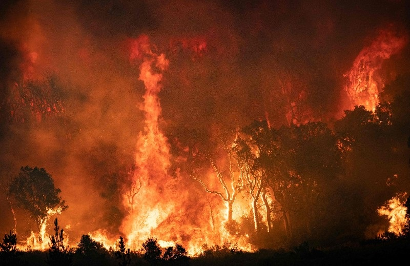 Fires in Morocco caused by heatwaves and strong winds are now under control