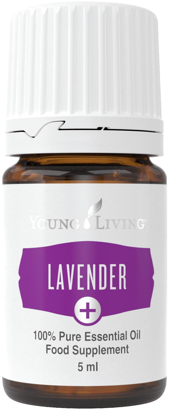 Lavendel Plus Öl 5ml
