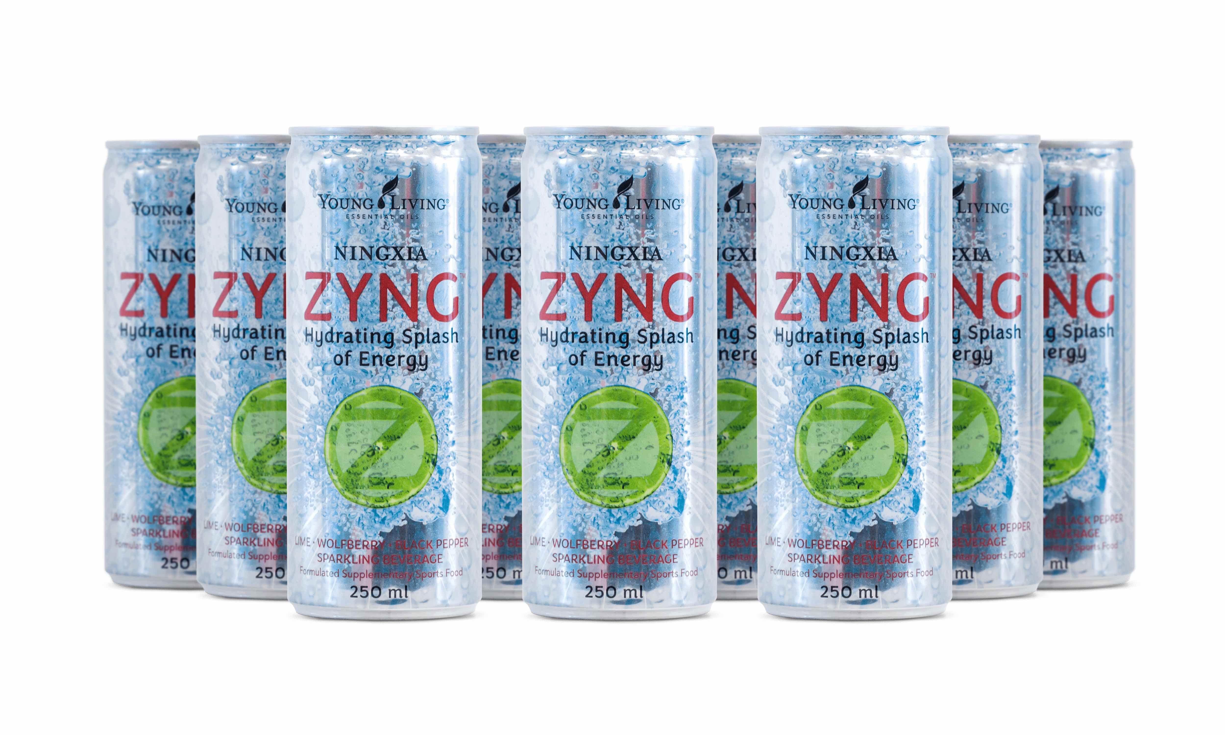NingXia Zyng Saft 12 Dosen