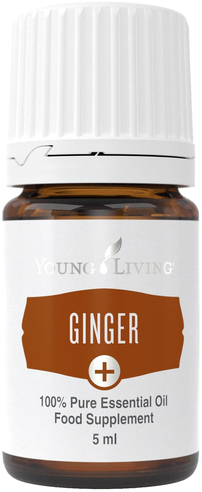 Ginger Plus Öl (Ingwer) 5ml
