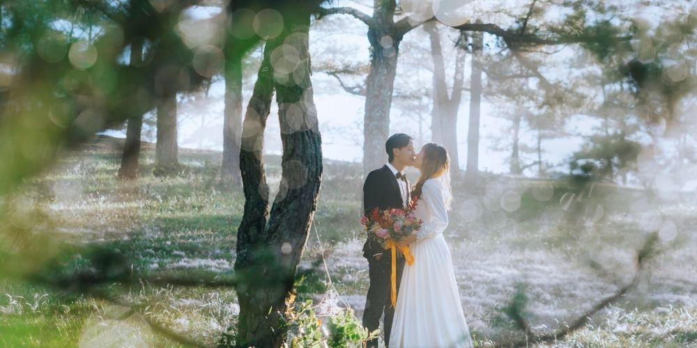 Photos des mariés en forêt durant leur mariage en petit comité