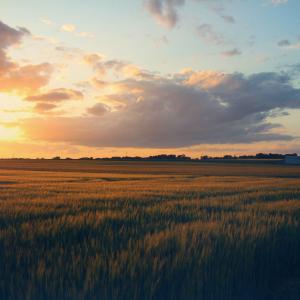 Photographie-Loiret