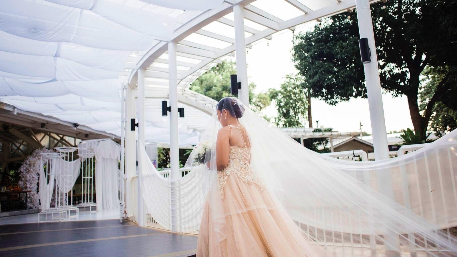 Une photo des mariés en Haute-Vienne