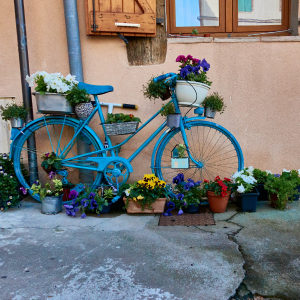 Photographie-Gaillac