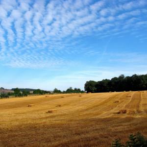 Photographie-Nièvre