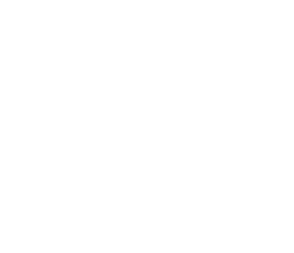 How Morrinson Wealth uses Winningtemp to support their people