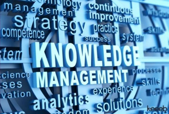 Wie Wissensmanagement Tools Ihre Wettbewerbsfähigkeit erhöhen