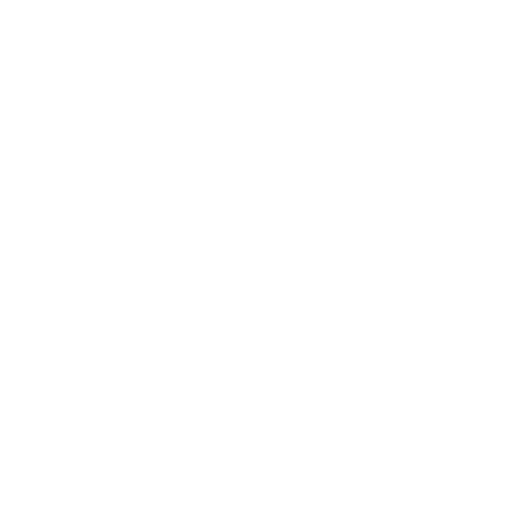 Max Company Logo