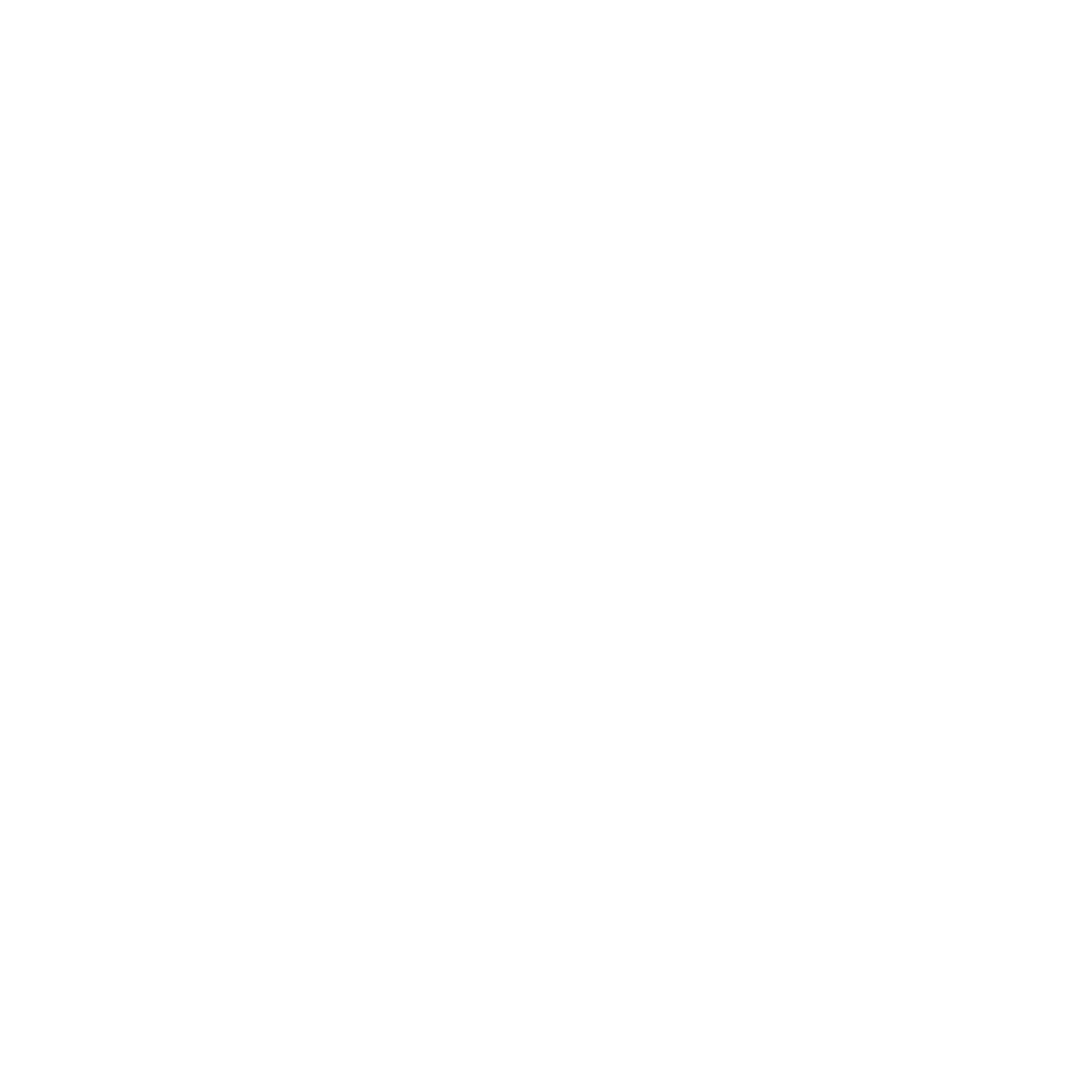 Virgin Records Company Logo