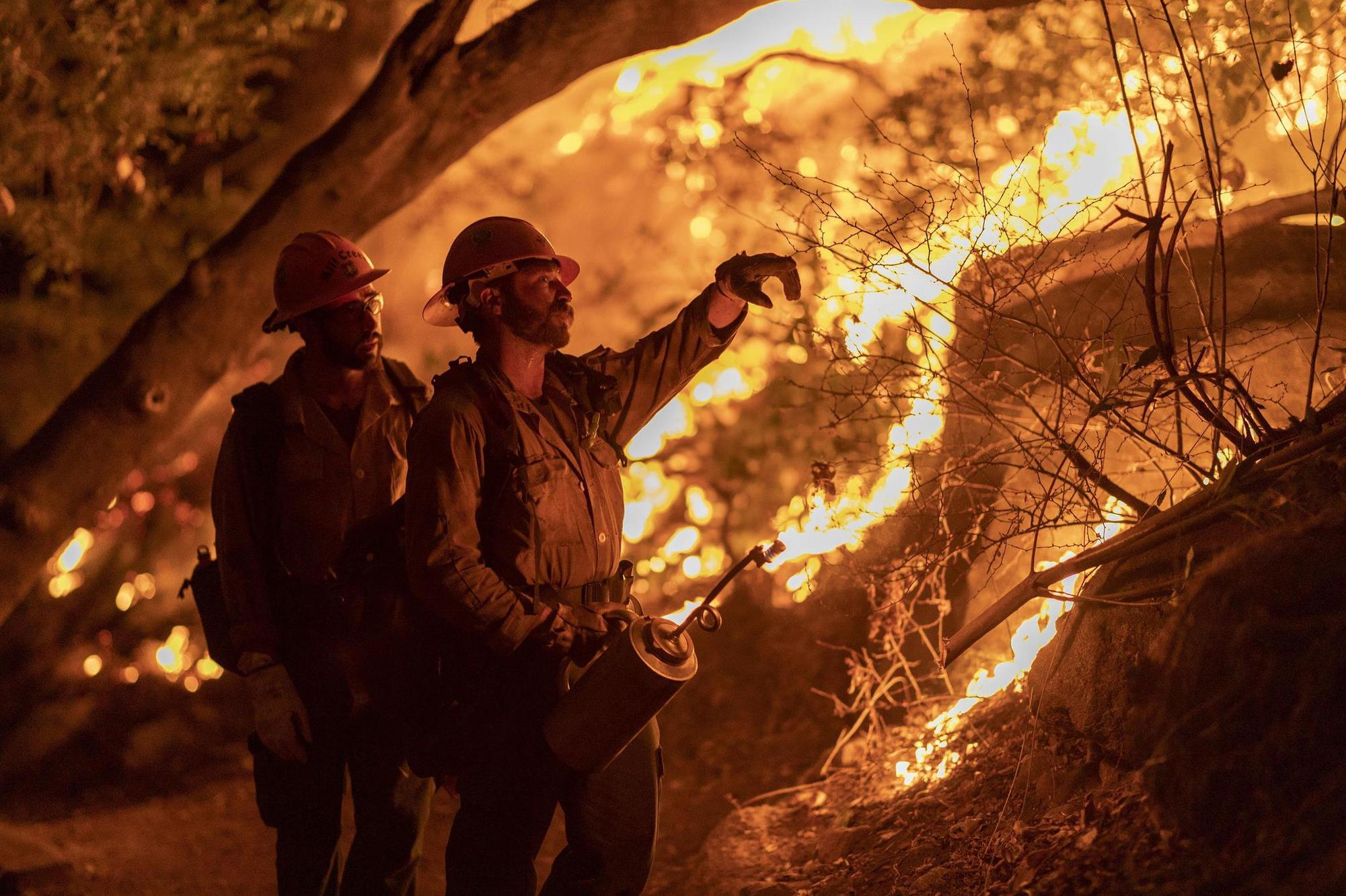 Waldbrände, wie sie seit mehreren Jahren etwa Kalifornien heimsuchen, werden vermehrt ausbrechen. AFP