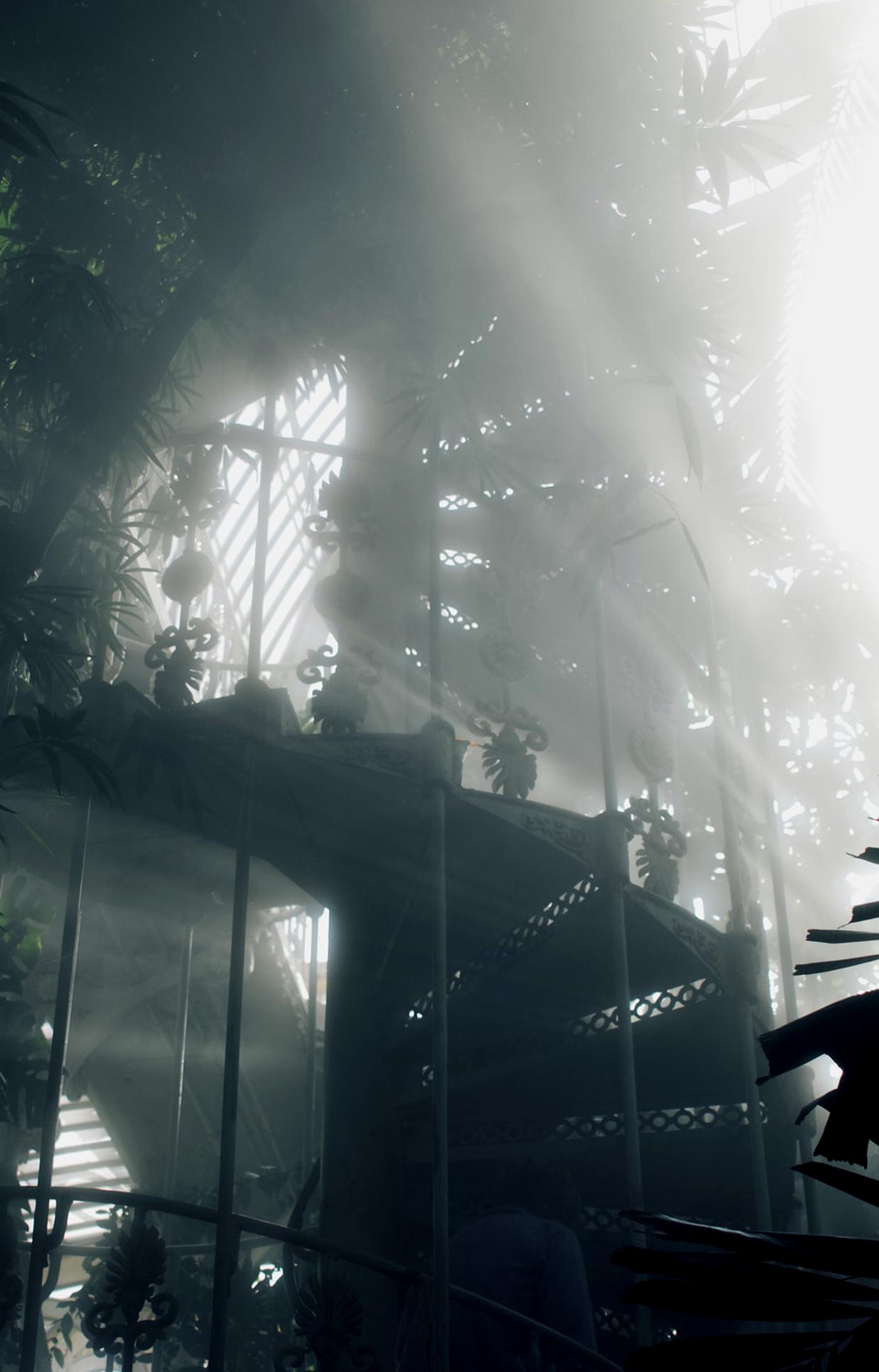 Transplanted Tropics: Kew's Palm House