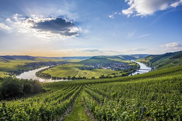 Moselle River Loop