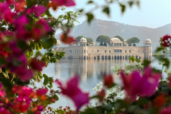 Jaipur Flowers