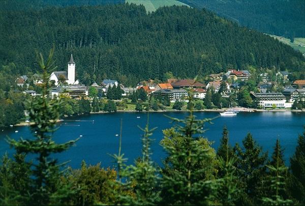 Black Forest Danube