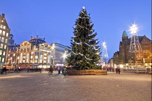 amsterdam-christmas-tree-town-square-illuminated
