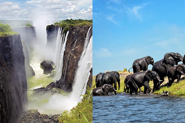 Wildlife and Falls