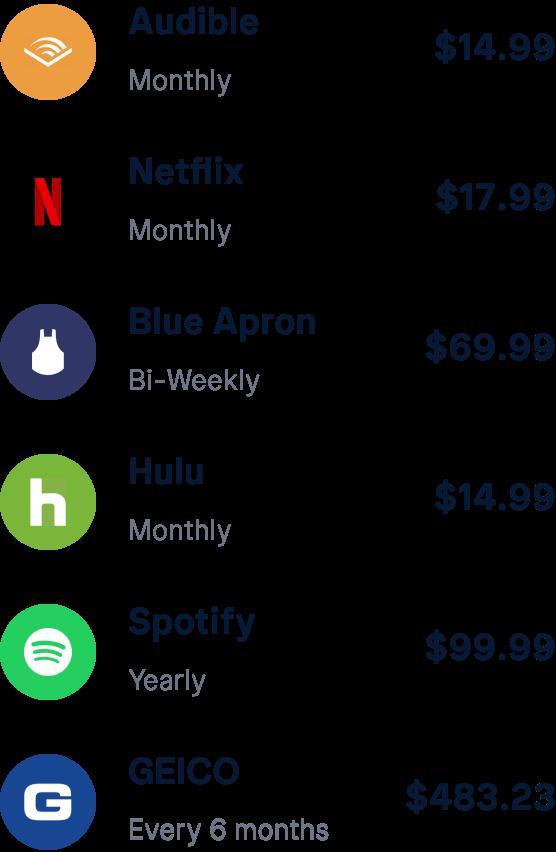 List of subscriptions including Audible, Netflix, Blue Apron, Spotify, etc.