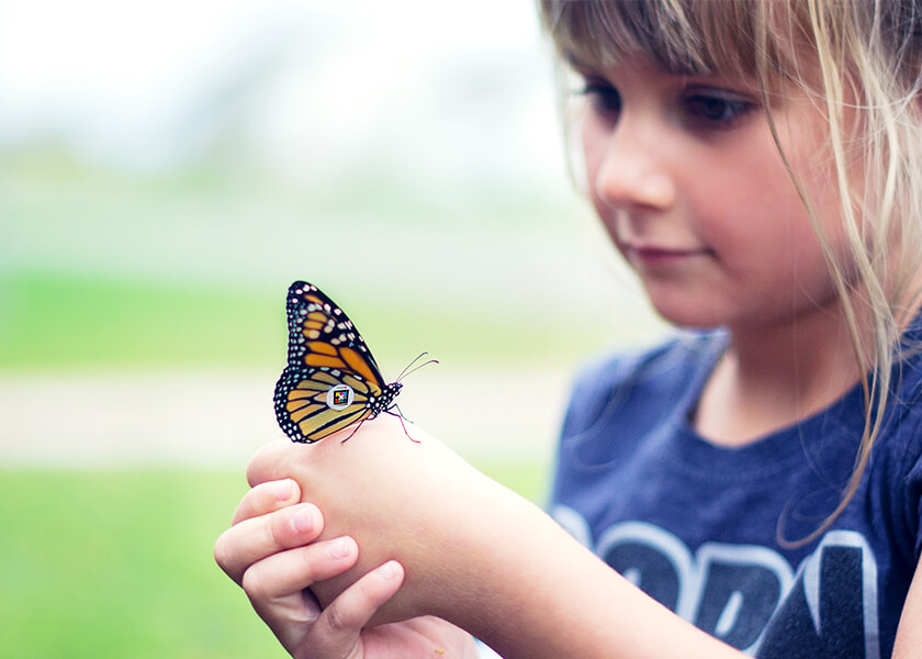 Blond female child with butterfly on her hand