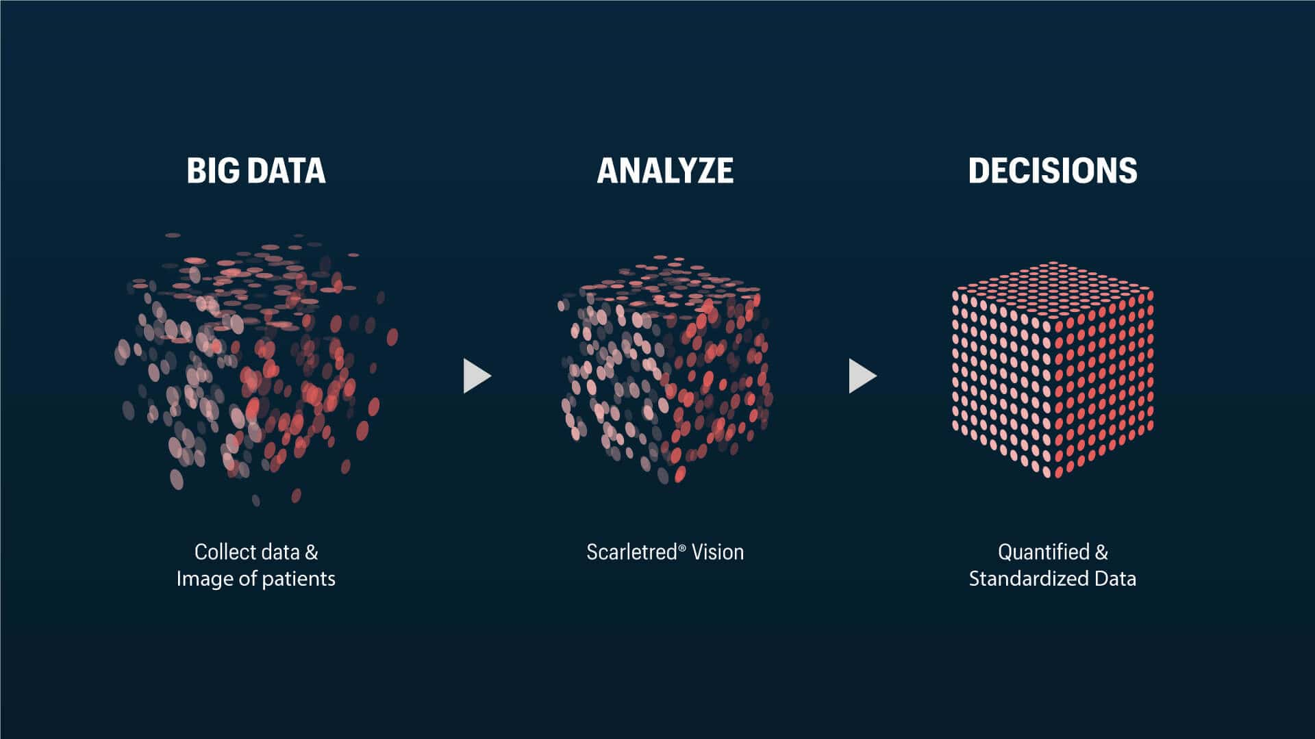 Organizing big data into smart data with ScarletredVision to make decisons