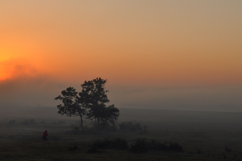 Plains of the Brahmaputra