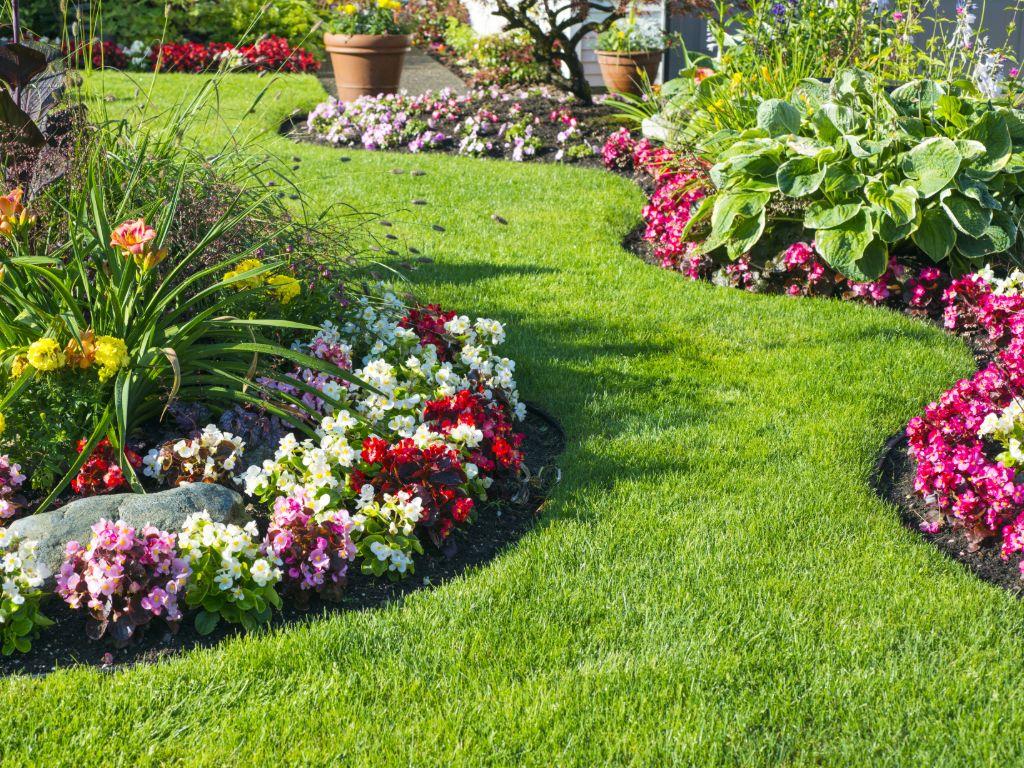 Садовая техника и инструменты: Критерии выбора