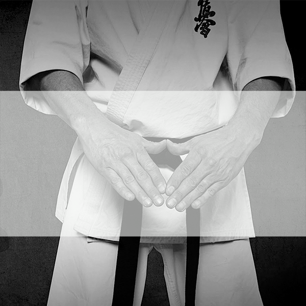 an image of a white-yellow belt student