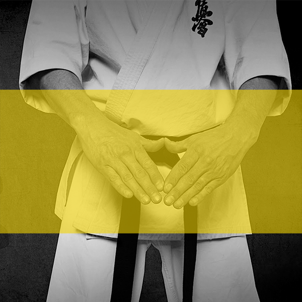 an image of a yellow-blue belt student