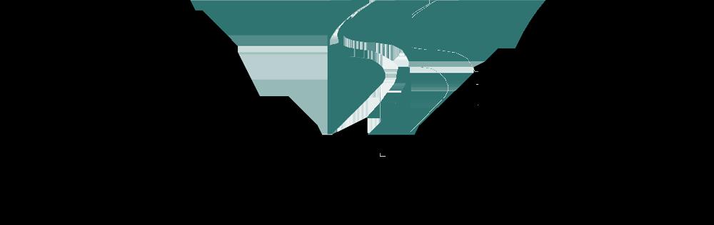 Our partner Semtech's logo