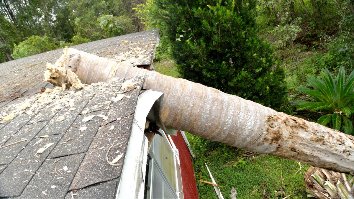 roof repair log through roof
