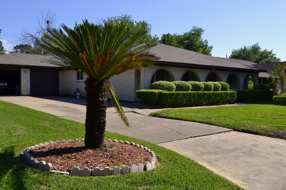 contractor roofing supply palm tree in front of house