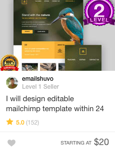 email design template Gig