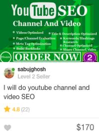fiverr video seo gig