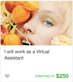 Virtual assistant Gig Service on Fiverr